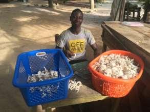 Mushroom production