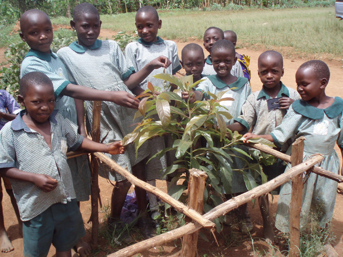 One Pupil one Tree Planted