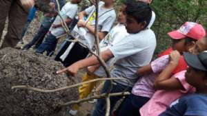 Bring Environmental Education Program to Ecuador