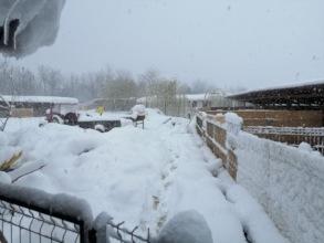 Winter again in April