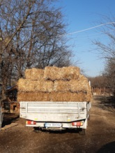 part of straw was deliverd