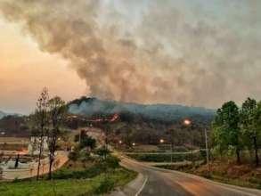 Change to organic farm for air pollution in Thai