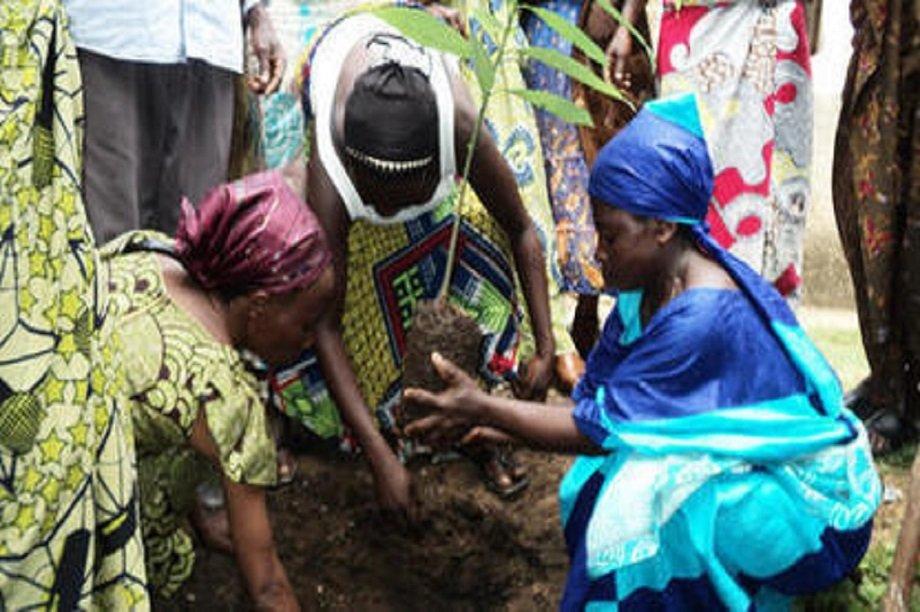 Let's help Indigenous women of Mwenga