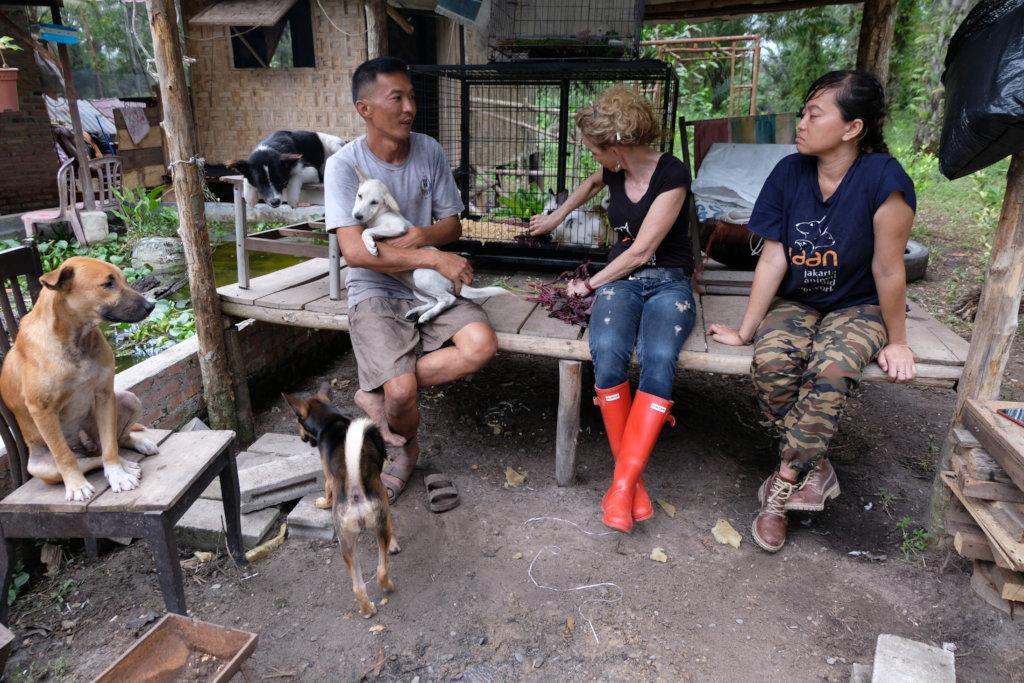 Farm Animal Sanctuary Riau, Indonesia.