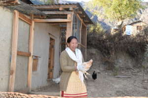 Chicken farming training