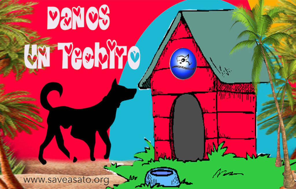 Danos Un Techito - Give us A Little Roof
