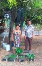 Seedling producers in rural community