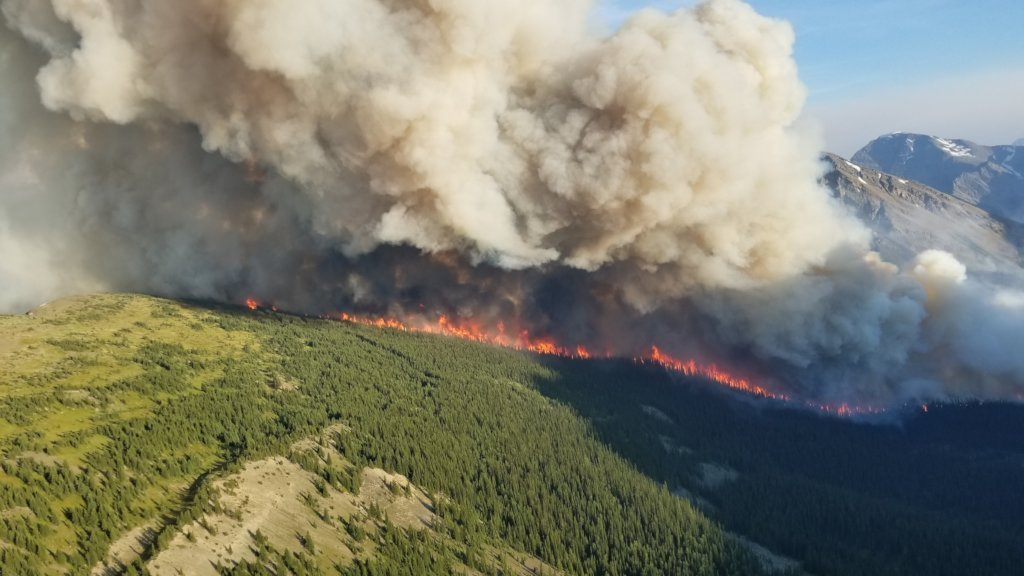 Building Resilience to Wildfires