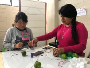 Making electricity with lemons