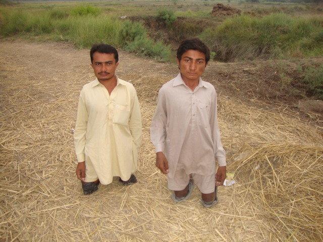 Alternative Livelihood for Education & Environment
