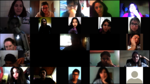 Some of the 30 participants in our first webinar