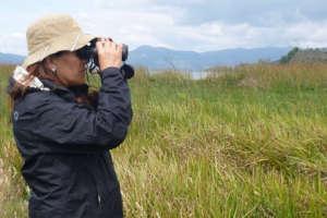 Juanita is birding, in search for Apolinar's Wren