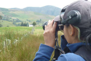 In search for Apolinar's Wren, at Lake Tota