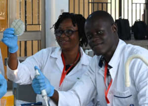 Team of participants working in the lab