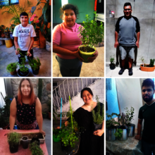 Beneficiaries proud with their own herb plants