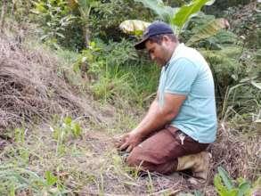 farmer planting a tree