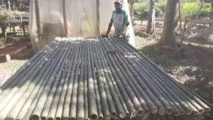 bamboo seedling table