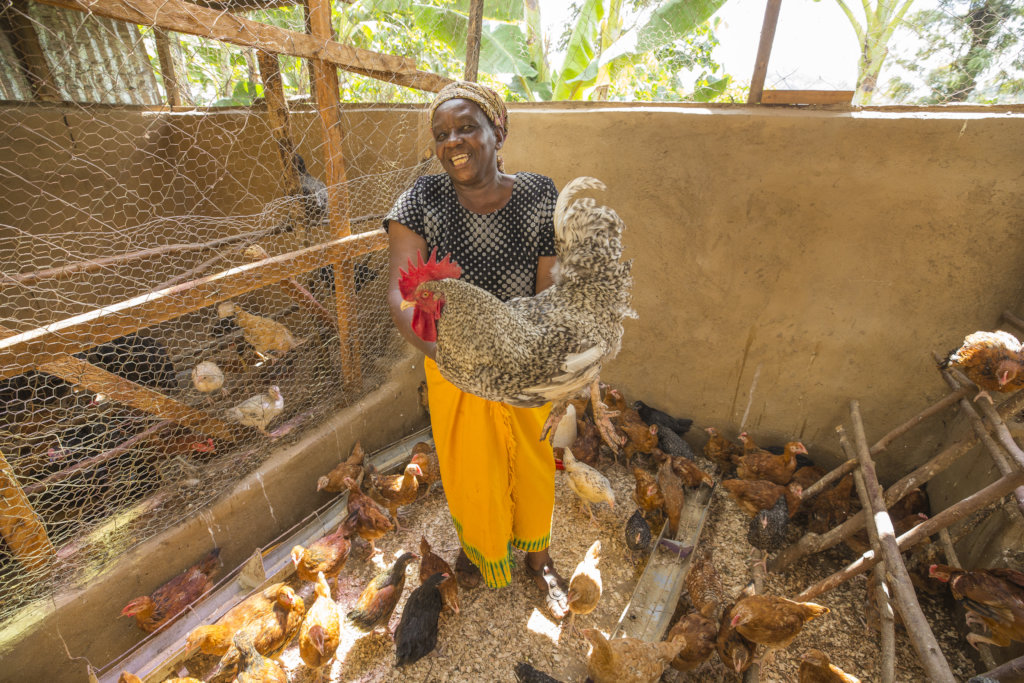 Sustainable livelihoods for 220 farmers in Kenya