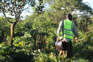 Zambia: radioeins (rbb) is reversing deforestation