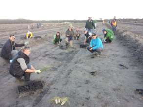CVA volunteers on a previous planting project
