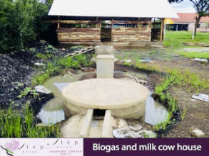 BIOGAS & COW HOUSE