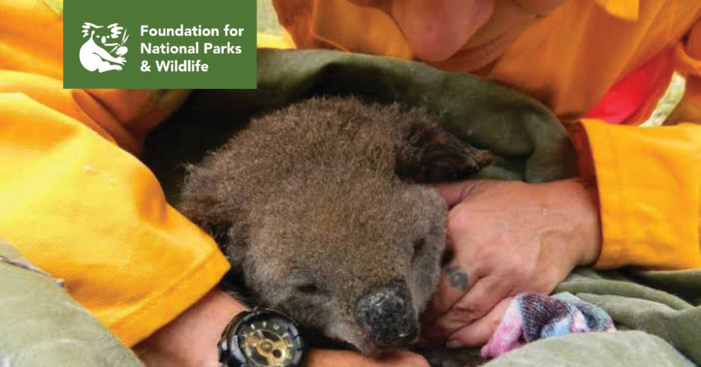 Wildlife Emergency Appeal