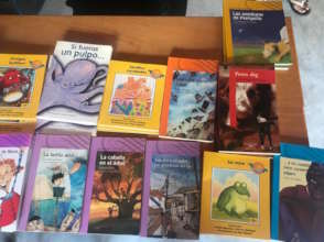 Selecting books to read and lent to the children