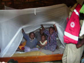 Five children sharing one mosquito net