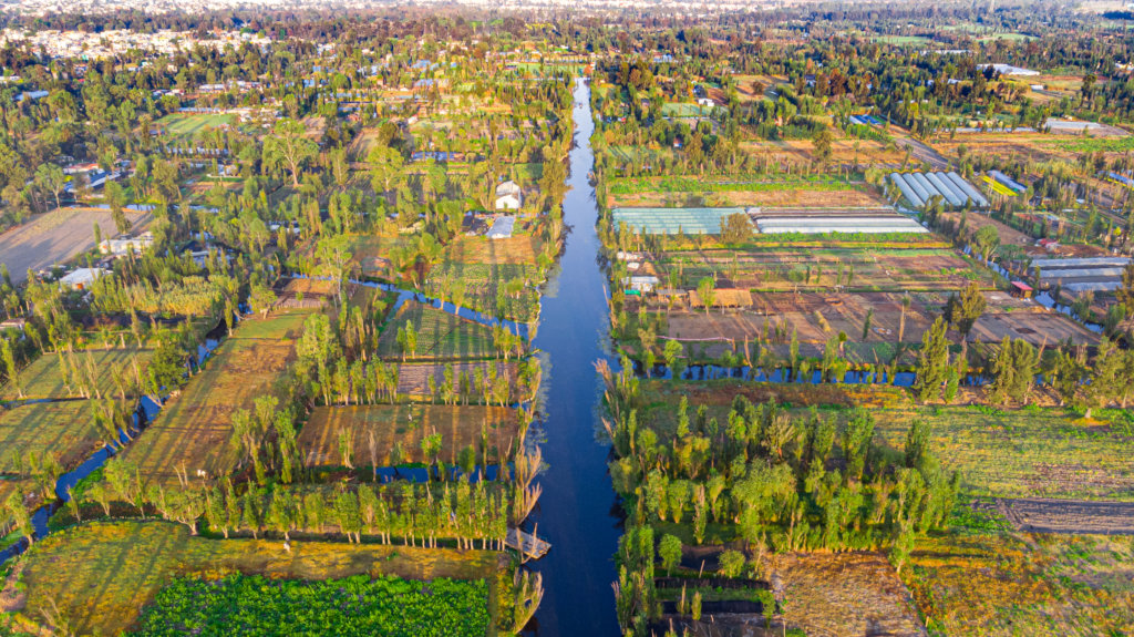 Create a refuge and save the Xochimilco wetland