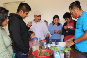Conserving native seeds