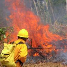 Managing fire in the Maya Golden Landscape