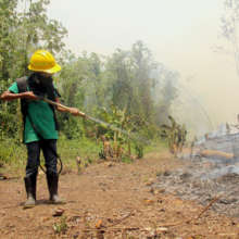 Training local youth in fire management