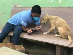TOLFA Staff with dog
