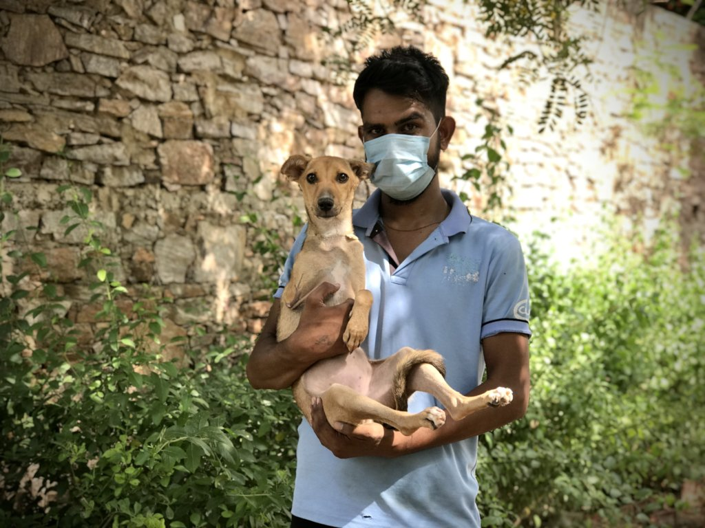 Help our Animal Hospital Survive Covid-19 Crisis