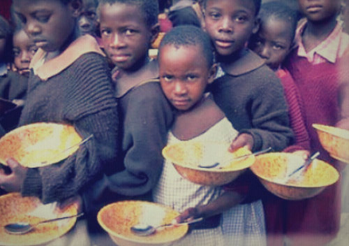 HELP ORPHANAGE CENTER  BE FOOD SELF SUFFICIENT