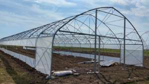 2 greenhouses structure