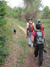 On a half-day trek through the forest