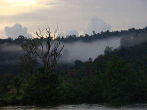 Sunset & Cloud Forest