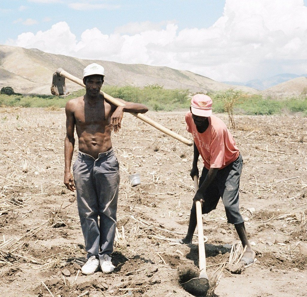 Expand Local Food Production in Rural Haiti