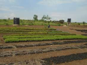 The new solar irrigation system