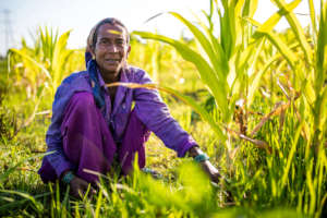 Parwati, one of our agricultural workers.