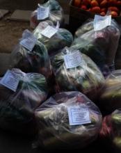 Vegetable ration bags The Garage School