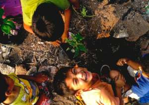 Lupe smiling, while his brothers plant trees