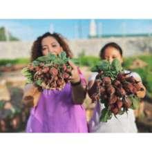 Women community gardens