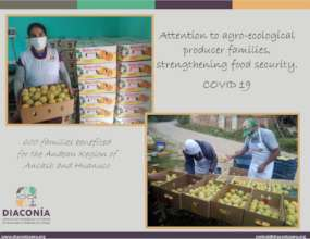 Agroecological producer families in context COVID