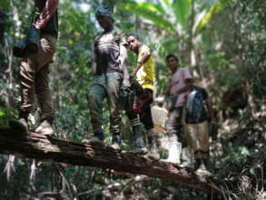 Reforestation efforts cross all bridges to enrich
