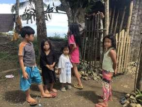 Survey in a remote village