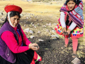 4. Juana and Lourdes gathering raw material.