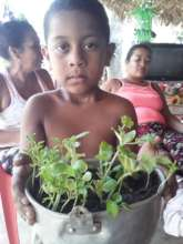 Vegetable Gardens for Food Security in Ayapel
