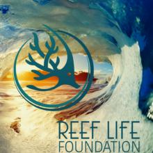 Reef Life Foundation Future of Ocean Health